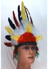 plumes d'indien