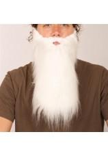 Longue barbe blanche