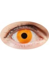 oeil orange- lentilles 6 mois