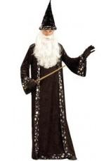 Merlin avec chapeau