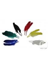 Plumes colorées 12 pièces - 17cm