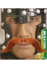 Moustache viking