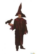 sorcier magicien harry