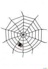Toile d'araignée orange 50g + 2 araignées