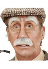 Moustache et sourcils gris