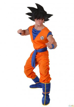 Dragon Ball Sandoku costume enfant