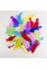 50 plumes colorees 25cm
