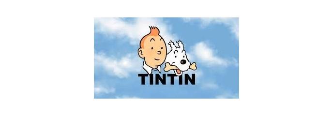 Tintin collector - liquidation
